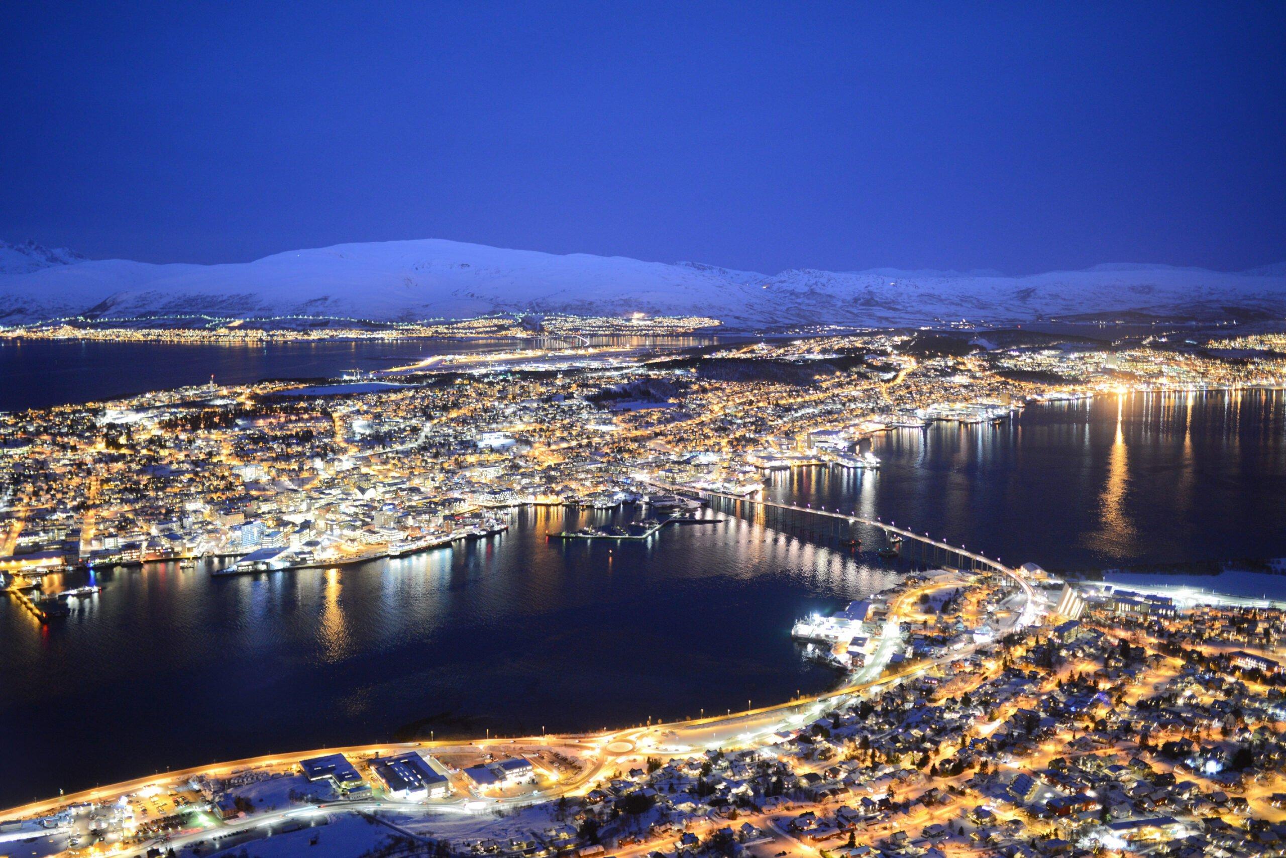 Selge gull i Tromsø